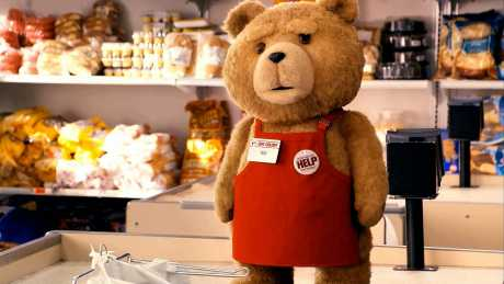 ted poza 2